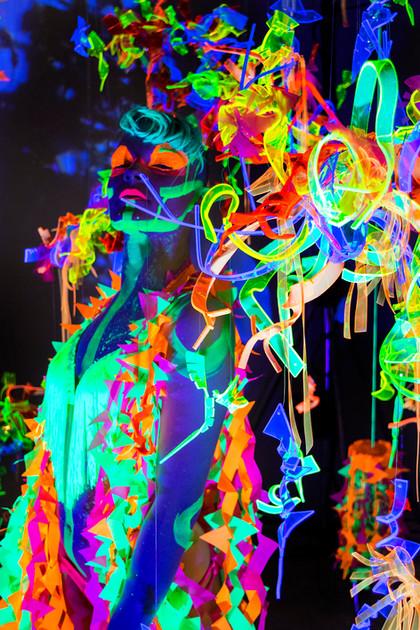 Asplenium Lilith3s.jpg