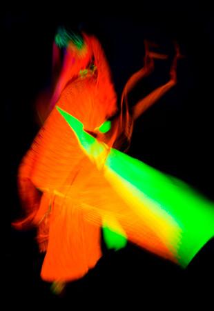 Neon Art April 17-8367.jpg