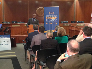 CEA Hosts Energy 101 Legislative Briefing at Florida Capitol