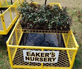 baker%20nursery_edited.jpg