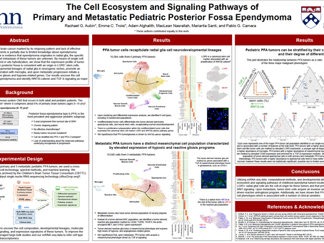 The Cell Ecosystem and Signaling Pathways of Primary and Metastatic Pediatric Posterior Fossa...
