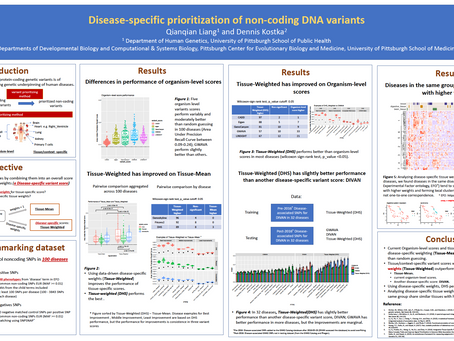 Disease-specific Prioritization of Non-coding DNA Variants