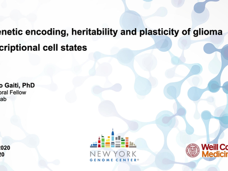 Epigenetic Encoding, Heritability and Plasticity of Glioma Transcriptional Cell States