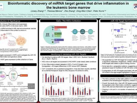 Bioinformatic Discovery of miRNA Target Genes that Drive Inflammation in the Leukemic Bone Marrow