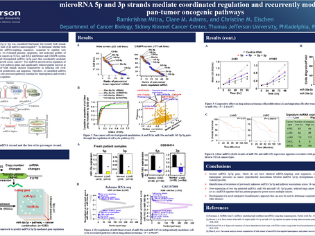 microRNA 5p and 3p Strands Mediate Coordinated Regulation and Recurrently Modulate pan-tumor...