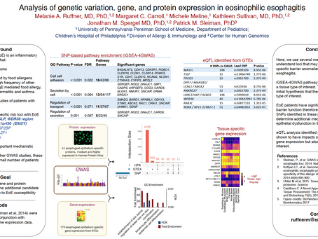 Analysis of genetic variation, gene, and protein expression in eosinophilic esophagitis