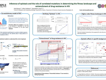 Inference of Epistasis and the Role of Correlated Mutations in Determining the Fitness Landscape ...