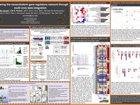 Uncovering the Mesendoderm Gene Regulatory Network through Multi-mic Data Integration
