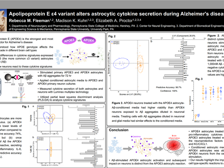 Apolipoprotein E ε4 Variant Alters Astrocytic Cytokine Secretion During Alzheimer's Disease Stimulus