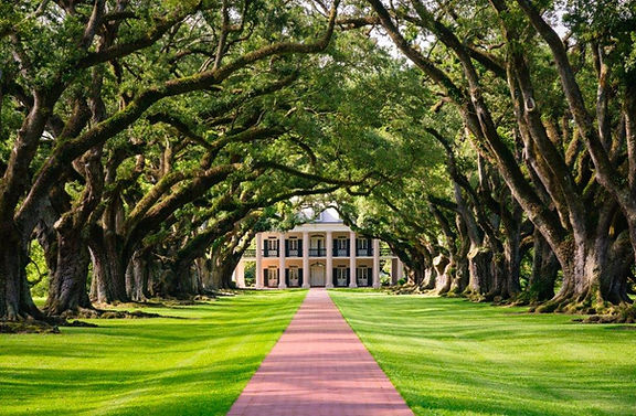 oak alley Plantation.jpg