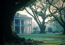OAK ALLEY and EVERGREEN PLANTATION TOUR
