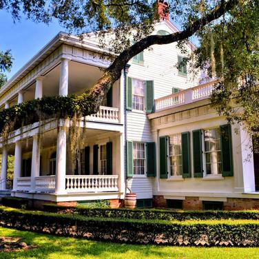 plantation2.jpg