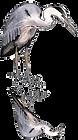 blue_heron.png