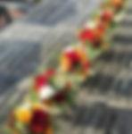 Row of pumpkins.jpg