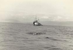 5gibraltar1965.jpg