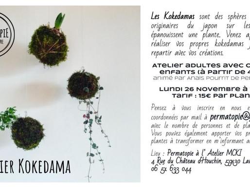 Atelier Kokedama le 26 novembre