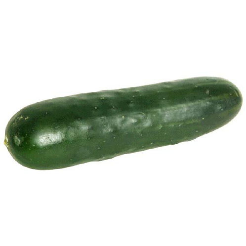 Seedless Cucumbers