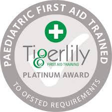 Climbing Bears Awarded Platinum Award for First Aid Commitment!