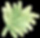 leaf-1-16.png