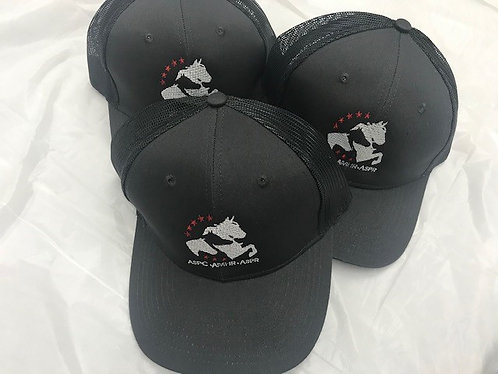 Structured Baseball Hat