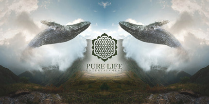 Pure Life Entertainment