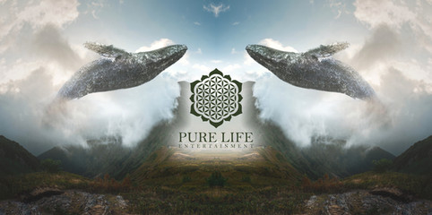 Pure Life Entertainment Cover