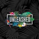 Unleashed Illusin Show Logo