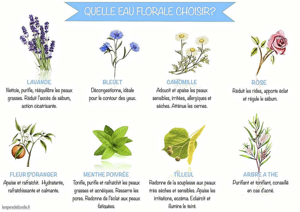 Quelle eau florale choisir ? Les différentes eaux florales et leurs bienfaits