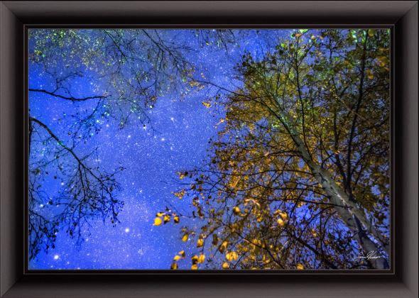 Birch Milky Way