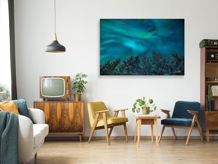 Aurora Evergreen