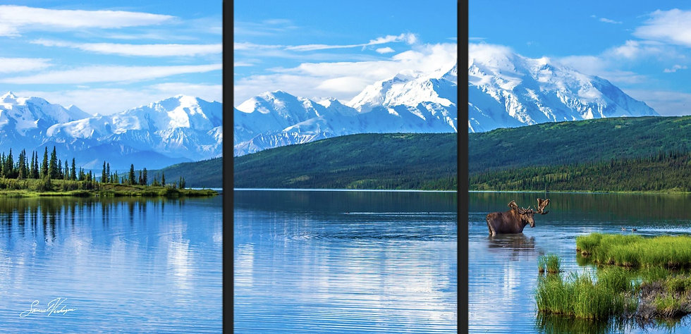 Grazing Wonder Lake Triptych