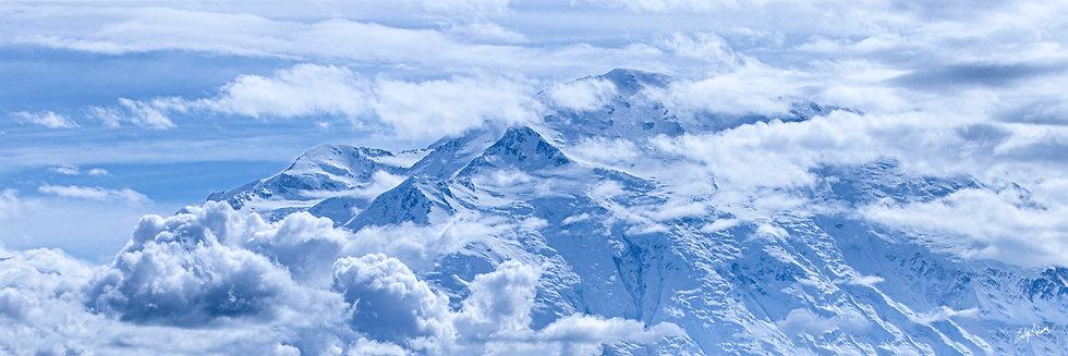 Denali Skies