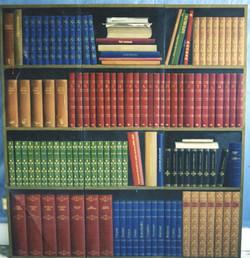 Faux bookshelf on cupboard doors