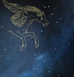 Horoscope Ceiling
