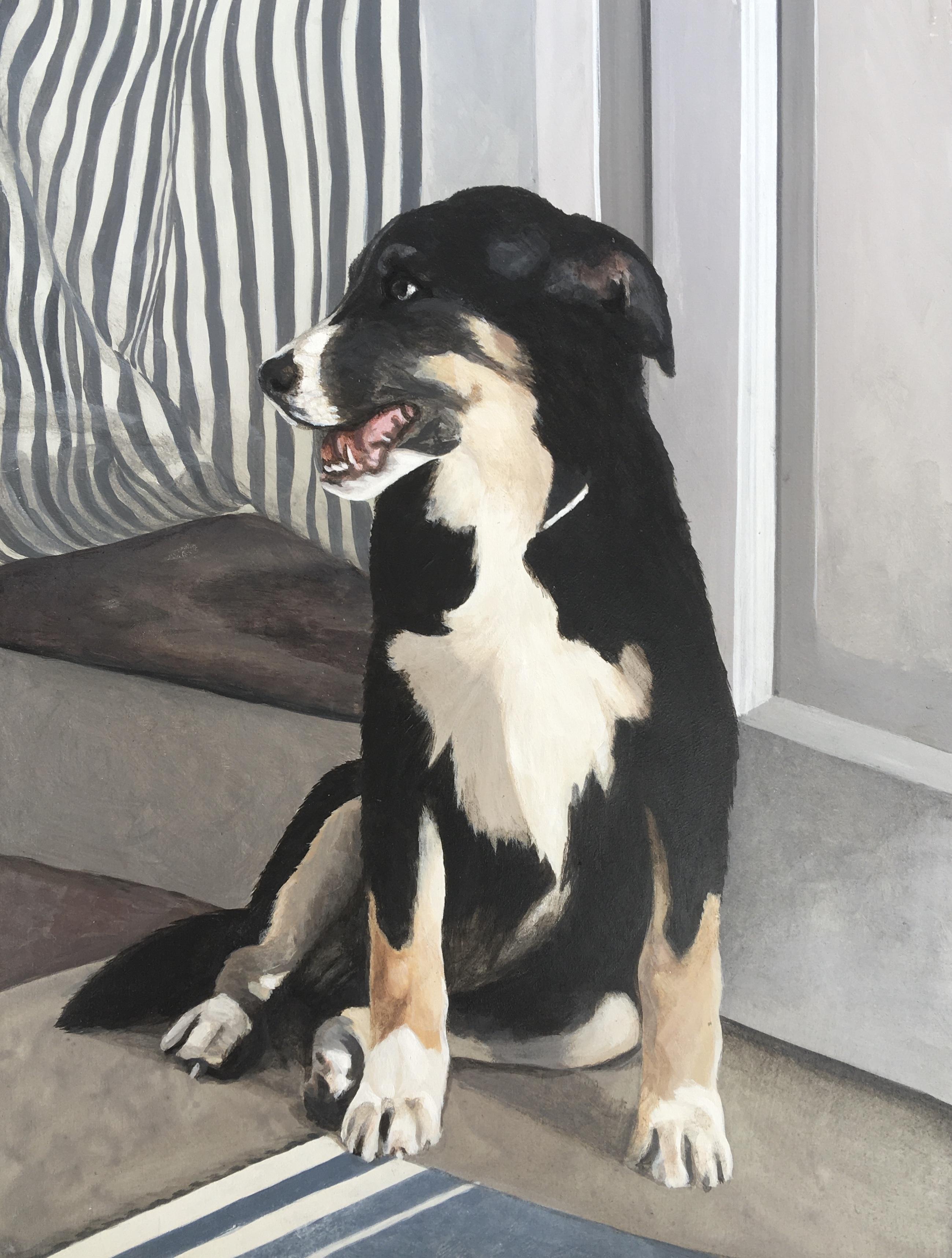 rifat's dog 2