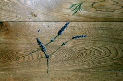 lavender on a kitchenfloor