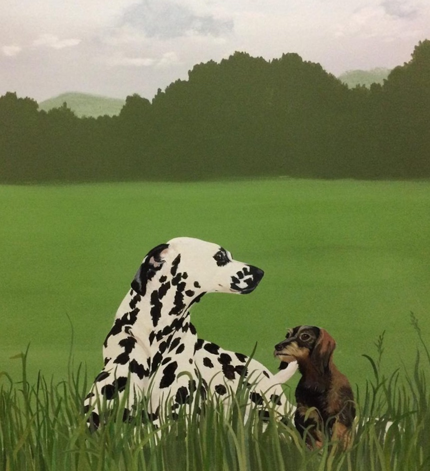 Dalmation and wirehaired dachshund