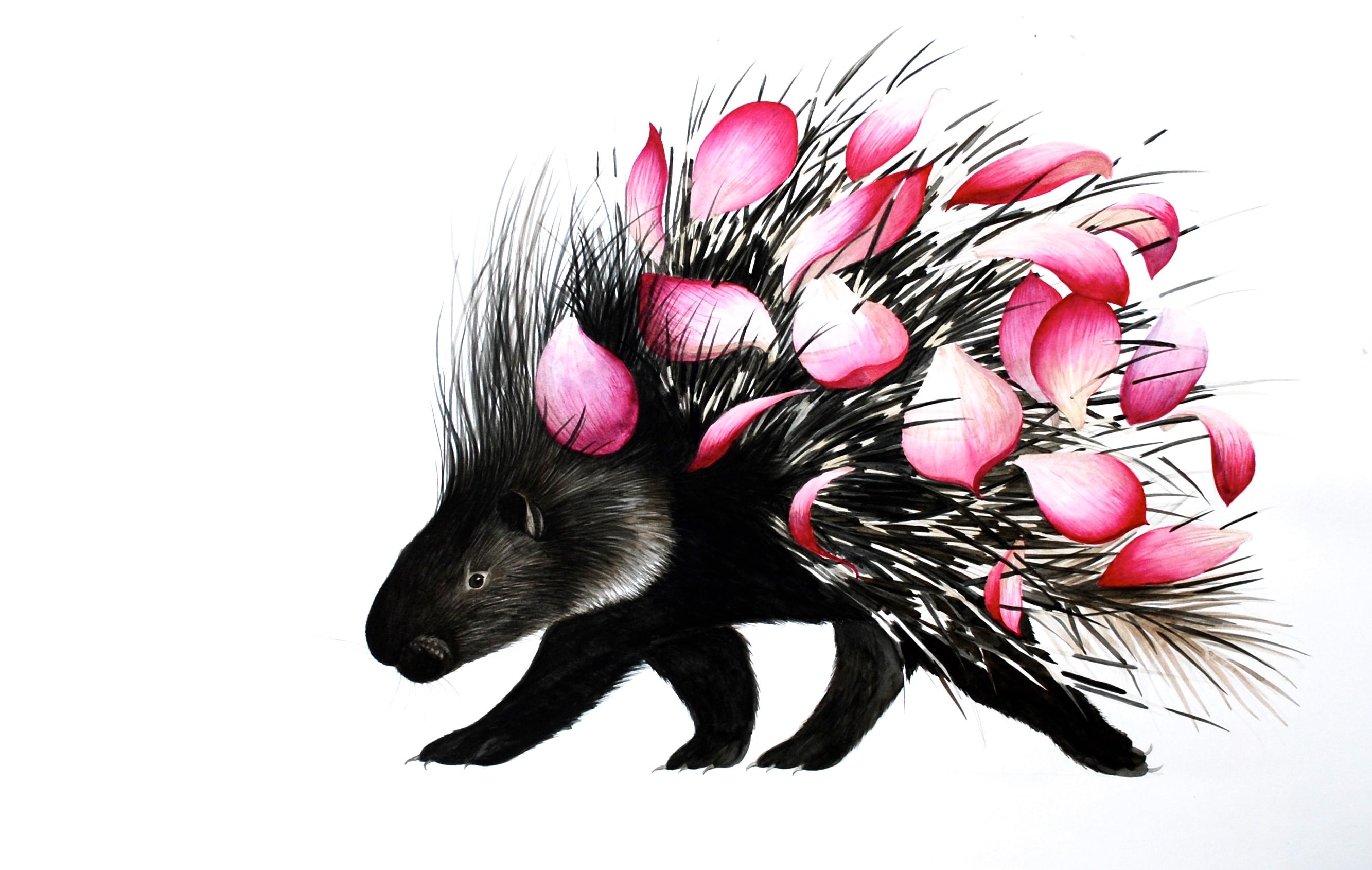 porcupine with lotus petals