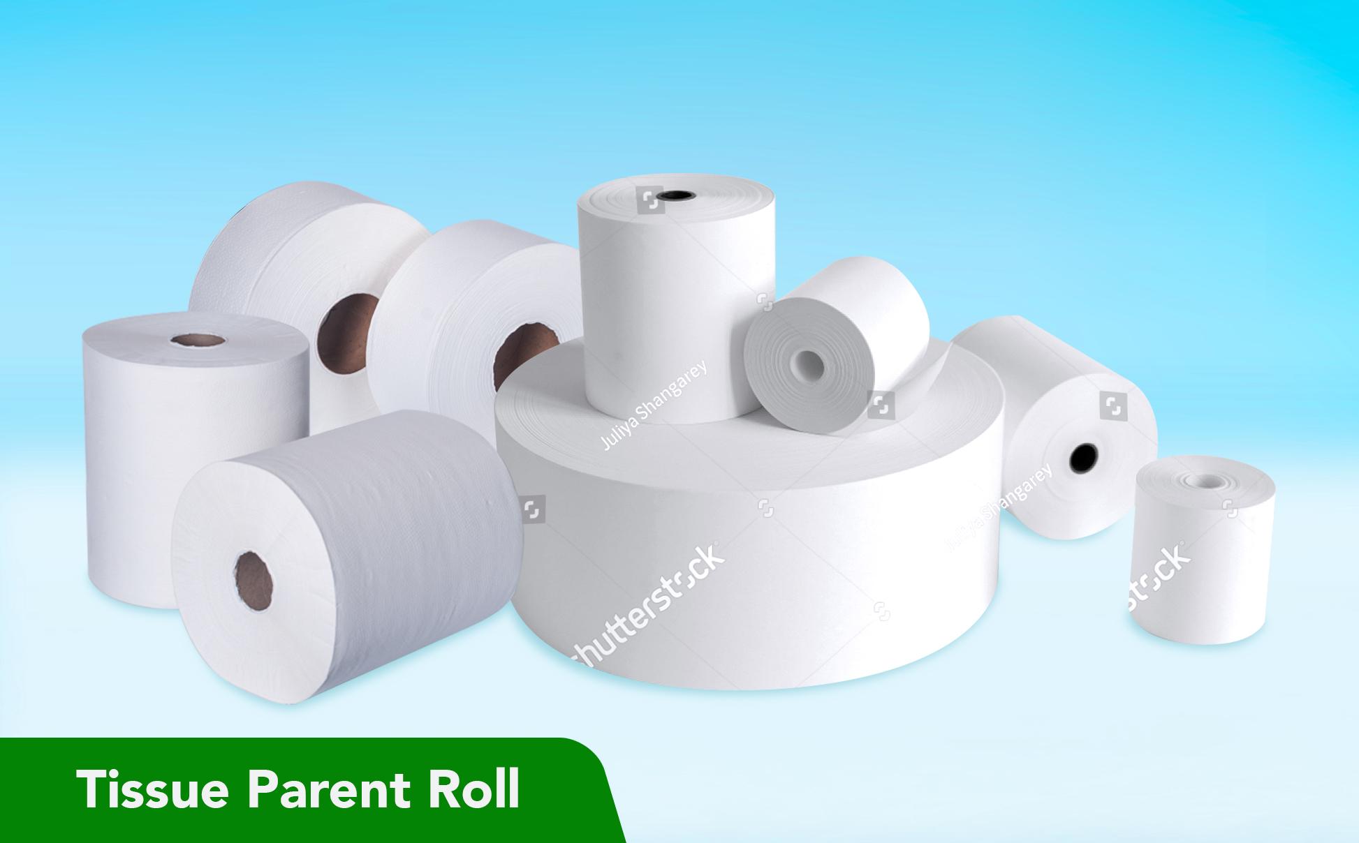 Tissue Parent Roll