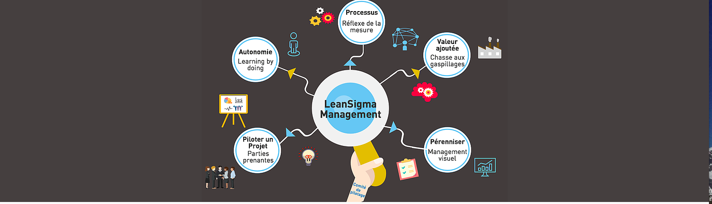 Lean Sigma Management