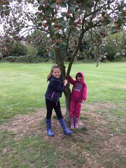 Tree Twins