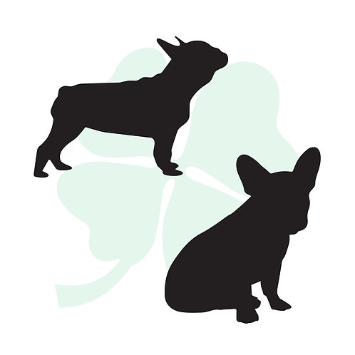 Boston Terrier Vinyl Stickers