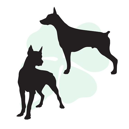 Doberman Vinyl Stickers
