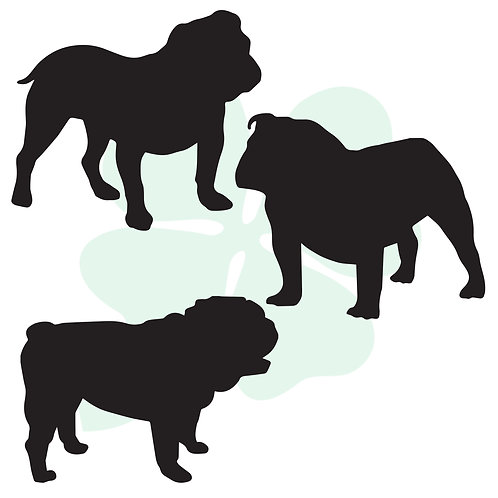 English Bulldog Vinyl Stickers