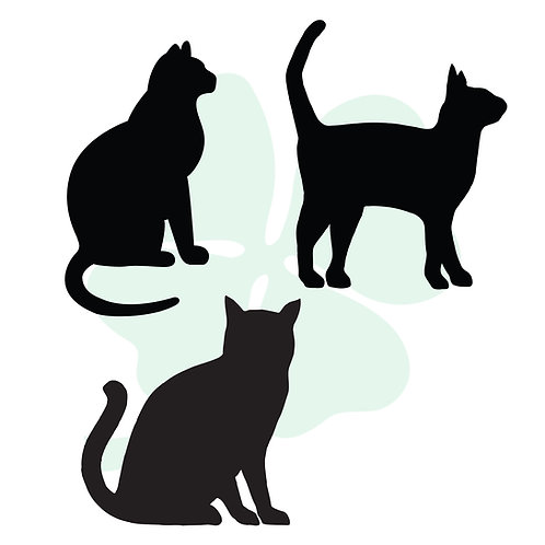 Cat Vinyl Stickers