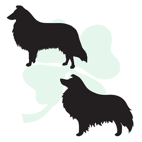 Collie Vinyl Stickers