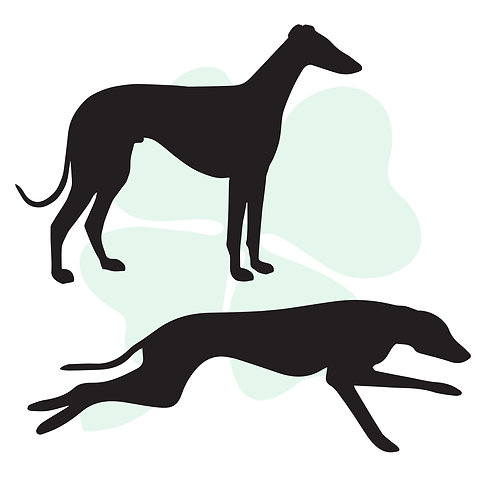 Greyhound Vinyl Stickers