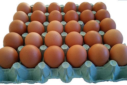 Bandeja com 30 ovos