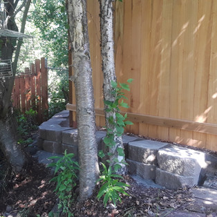 Cedar Privacy Fence with Retainer Wall.