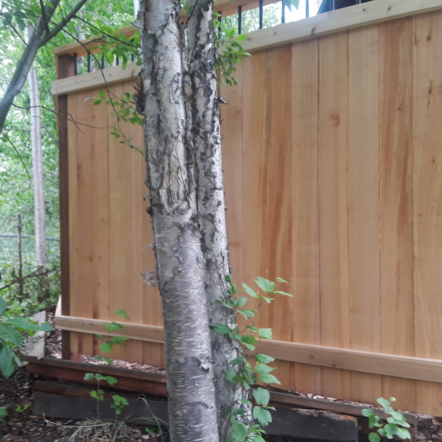 Front Yard Privacy Wall